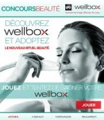 Logo Wellbox