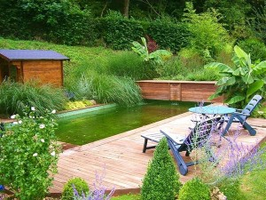 aménager la piscine du jardin